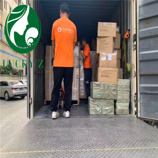 Ocean Freight/Air Shipping Agent/ Door to Door Tansport Service/ Fba Service/ DHL, UPS, FedEx /Express Agent in Shenzhen pictures & photos