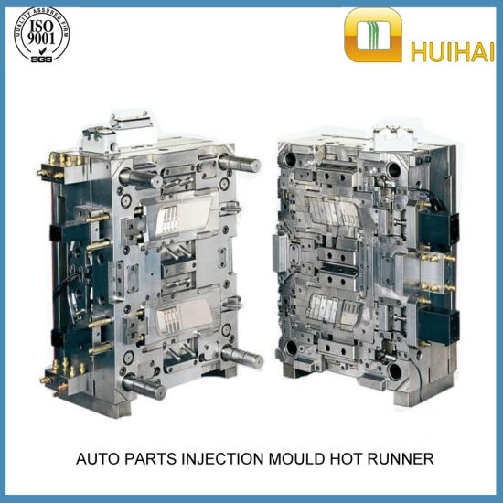 China Plastic Injection Mould for Auto Parts/Injection Mold