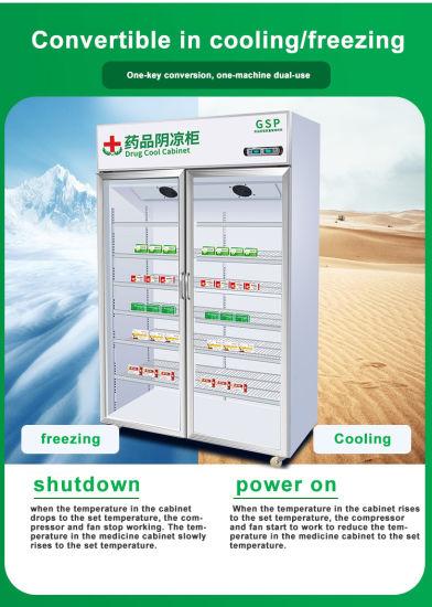 Double Door Vertical 2-8 Degree Laboratory Temp Stable Medicine Vaccine Refrigerator