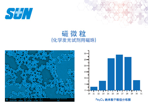 Chemiluminescence Immunoassay Hydrophobic Magnetic Beads for Diagnostic Reagents (carboxyl group)