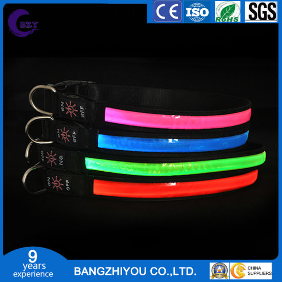 LED Collar Dog Luminous Collar USB Charging Large and Small Dog Luminous Pet Luminous Collar