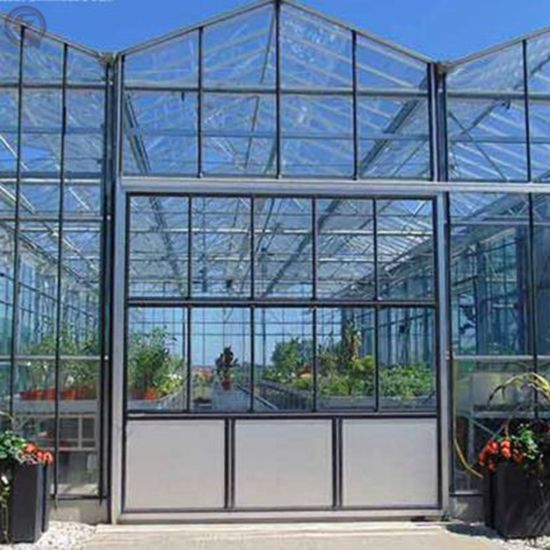 Shengqiang Structure Stable Garden Greenhouse Can Grow Flowers Glass Greenhouse