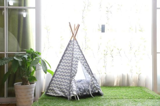 Five Sticks Soft Pet Tribe Comfortable Pet Teepee Dog Tent Cat Tent : dog teepee tent - afamca.org