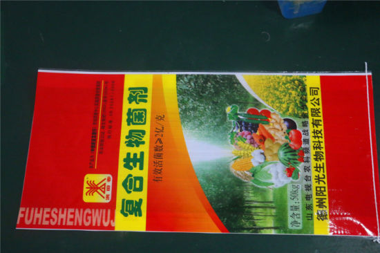 The Plastic Bag for Rice Package pictures & photos