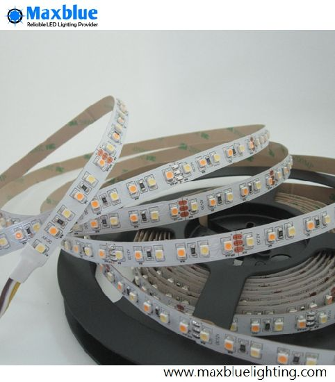 Double CCT Dual White DC12V 3528SMD Flexible LED Strip pictures & photos