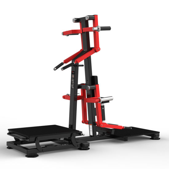 China Fitness Equipment Gym for Standing Lateral Raise (HS-1050) - China Gym  Equipment and Fitness Equipment price