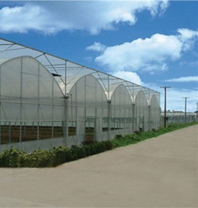 Agriculture Multi-Span Siingle-Span Plastic Greenhouse for Vegetables