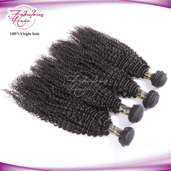 One Donor Peruvian Curly Natural Afro Kinky Curly Human Hair pictures & photos