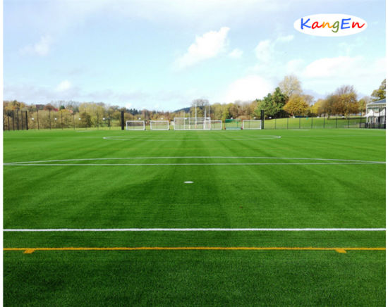 Thiolon High Grade Artificial Grass/Turf pictures & photos