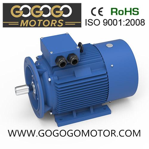Three Phase Electric Motor Ye2-100L-2 (0.75KW-400KW)