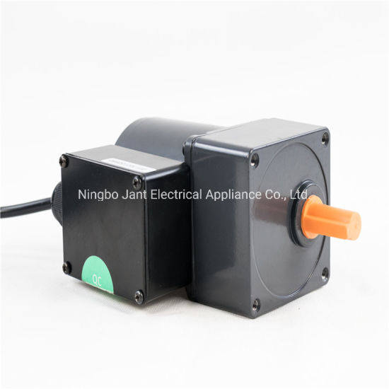 AC Gear Motor AC Single Phase Gear Motor for Pellet Stove High Torque Low Rpm AC Gear Motor