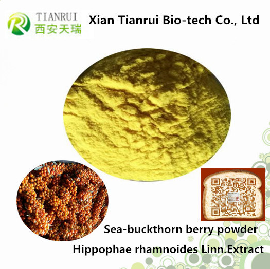 Hippophae Rhamnoides Linn Fruit Powder, Seabuckthorn Berry Powder pictures & photos