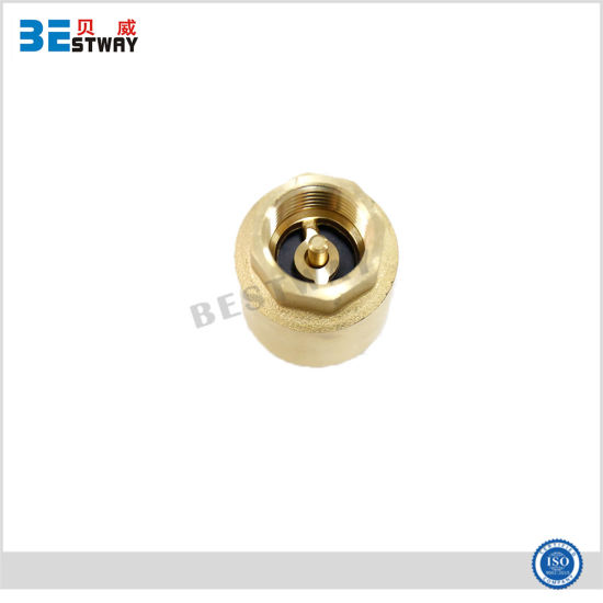 Non Return Brass Spring Swing Check Valves pictures & photos