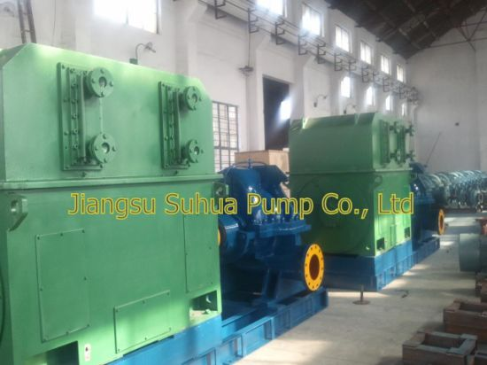 Two Stages Split Case Pump with Motor Exporting to Africa 3300V