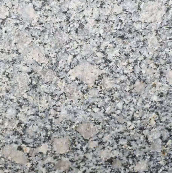 High Quality Best Price Natural Granite Tiles pictures & photos