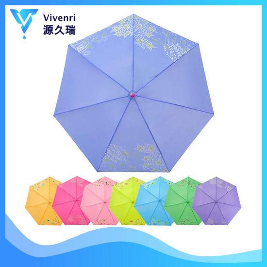 Parasol Compact Folding Umbrella, Mini Pocket Rain Umbrella, Lady Sun Umbrella