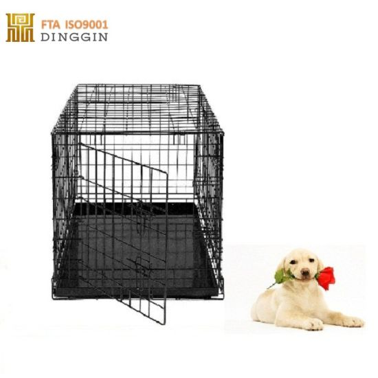 China Pet Crate With 2 Doors China Dog Cage Dog Kennel