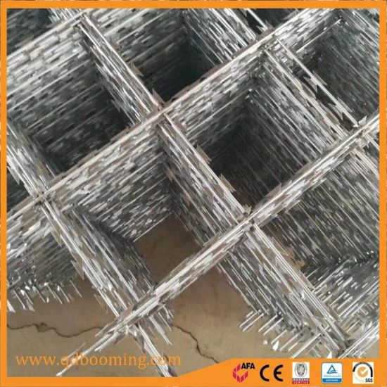 Border Razor Barbed Security Wire Fence