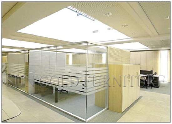 Modern Cheap Glass Barrier Low Used Office Room Dividers (SZ-WS595) pictures & photos