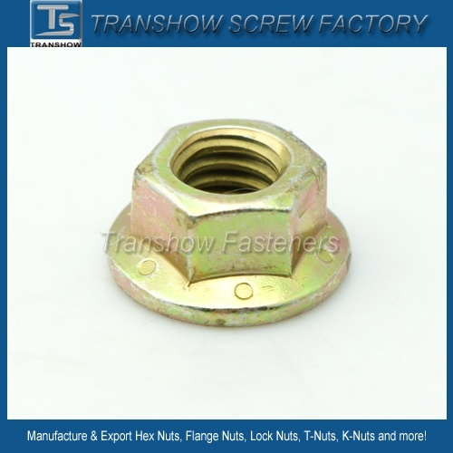 DIN6923 Carbon Steel Hex Flange Nut pictures & photos