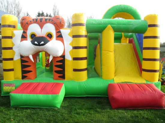 Giant Inflatable Bouncer Slide Combo, Inflatable Fun City pictures & photos