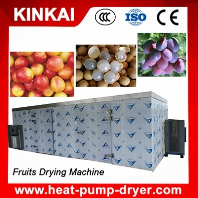 Hot Air Circulation Industrial Fruit Drying Machine