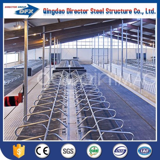 China Prefabricated H Steel Beam Cowsheephorsepig Poultry Farm