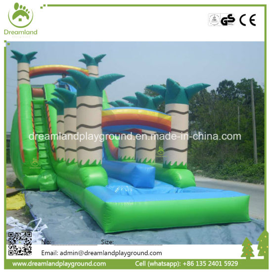 Commercial Inflatable Water Slide with Small Pool for Sales Craigslit pictures & photos