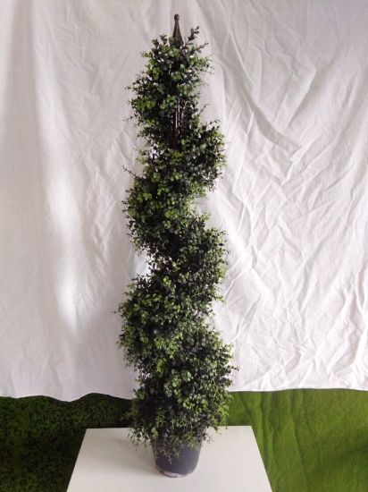 Artificial Plants and Flowers of Boxwood Tree Gu828289392 pictures & photos