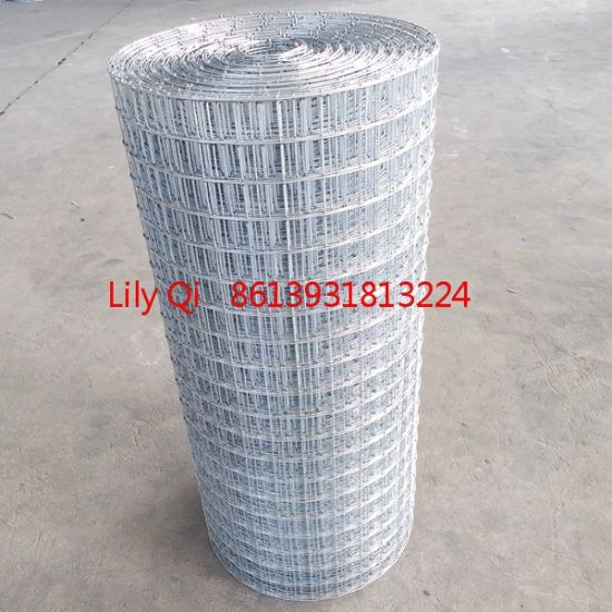 China Welded Rabbit Cage Wire Mesh 1 2x1 2 Inch 16 Gauge China Rabbit Cage Wire Mesh Rabbit Cage Welded Wire Mesh