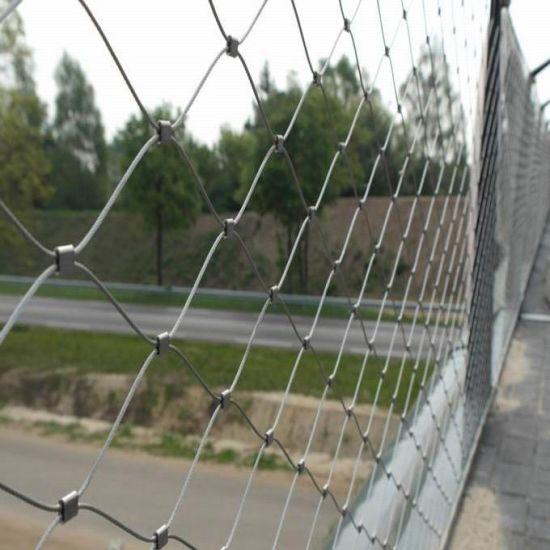Stainless Steel Wire Rope Mesh Security Fence Netting pictures & photos