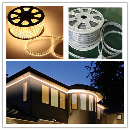 White Color 110VAC 220VAC SMD5050 High Voltage LED Strip Waterproof pictures & photos