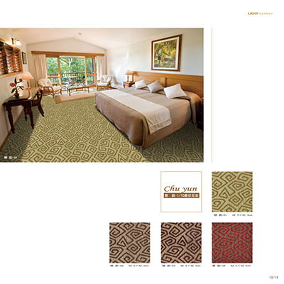 Pattern 1/10 Organic Polypropylene Jacquard Carpet Good Product pictures & photos