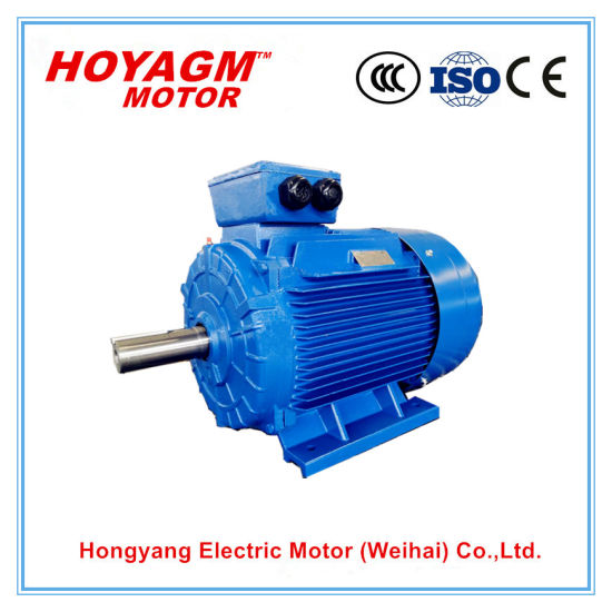 IEC Ce Approved High Efficiency Electric Car Conversion Kit for Fan Pump Blower Compressor Conveyor Ye2-160m2-2 15kw