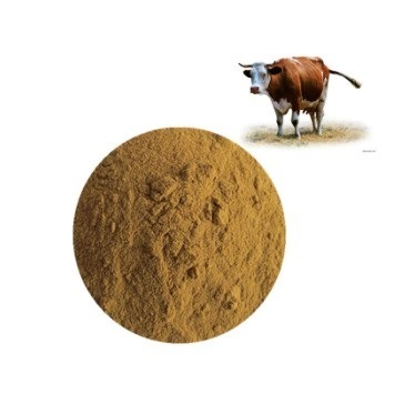 China Best Quality Ox Bile Powder pictures & photos
