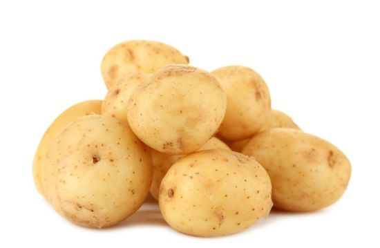Fresh New Crop Holland Potato From China