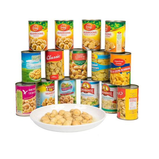 Cheapest Fresh Canned Mushroom Whole in OEM