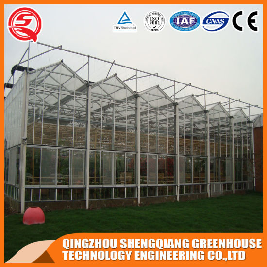 Commercial Multi-Span Garden Toughened Glass Green House pictures & photos