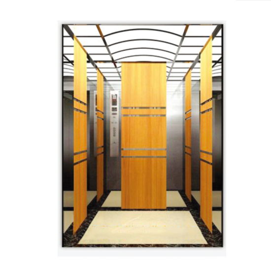 Safety and Comfortable Passenger Elevator Lift Home Lifts From Elevator Factory pictures & photos