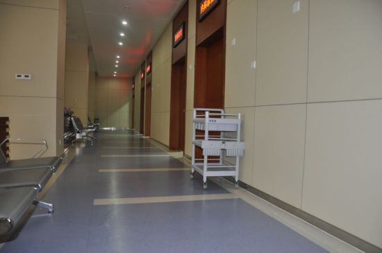 Fireproof Wall Covering Sheet for Hospital pictures & photos