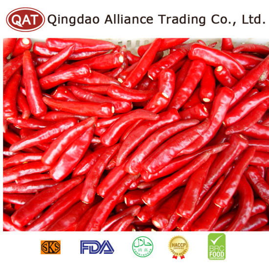 Fresh Chili with Top Quality pictures & photos