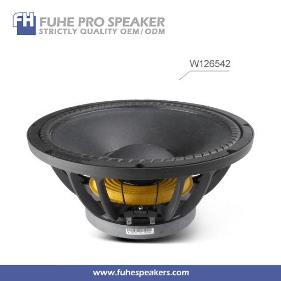 W126542 12inch Stage Speaker