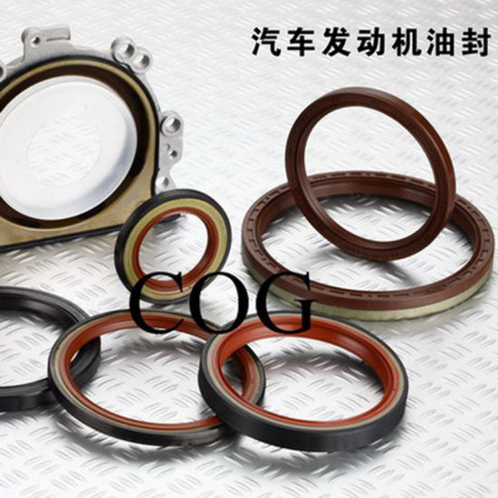 Auto Spare Auto Parts Shaft NBR Rubber Mechanical Oil Seal pictures & photos