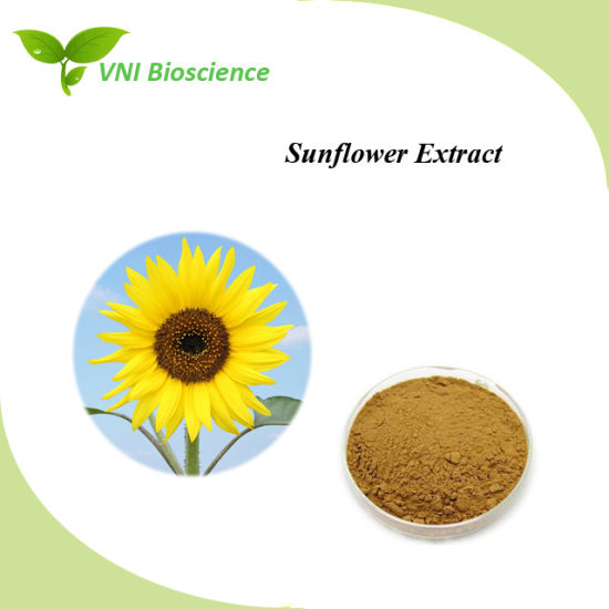 ISO SGS Certified Linoleic Acid/Helianthus Annuus Extract/Sunflower Seeds Extract pictures & photos