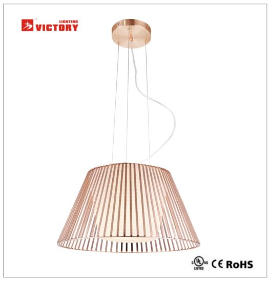 Hanging LED Pendant Lamp with Bulb Light Source