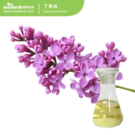 Factory Wholesale Pure Natural Organic Clove Flower Essential Oil with Eugenol, Clove Bud Oil Essential Oil