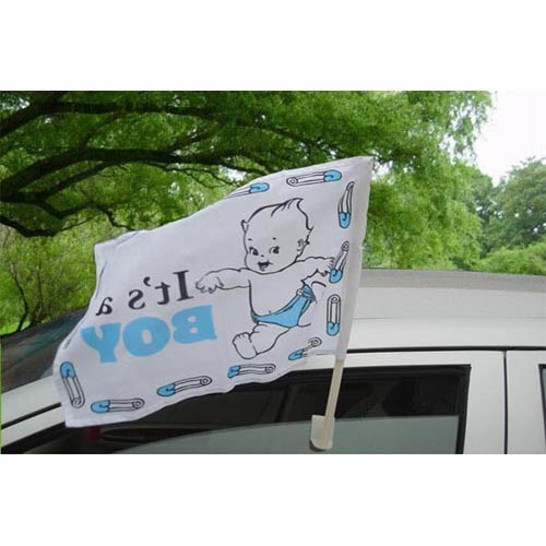 OEM Design Promotional Polyester Car Flag pictures & photos