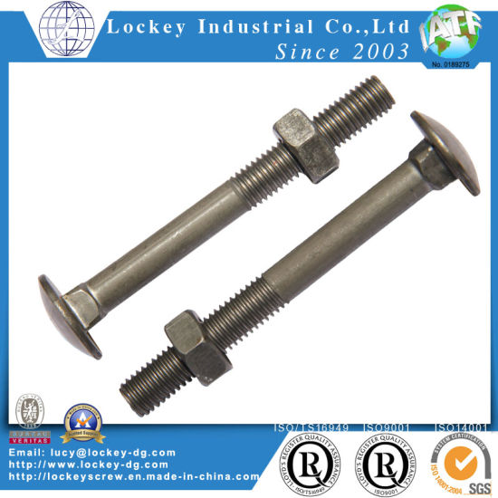 China Round Head Square Neck Carriage Bolt - China Carriage