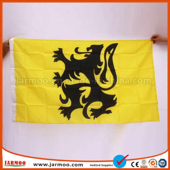 Fashionable Colorful Free Design Custom Embroidery Flag pictures & photos