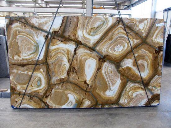 Yellow/Golden Stone/Granite/Quartzite Natural Stone Wood Palomino Bookmatch Square Paving Stone